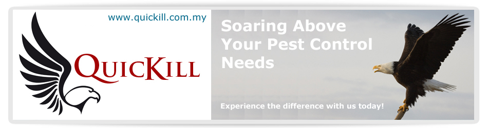 pest control services malaysia